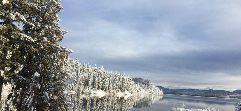 lake winter scene 2020